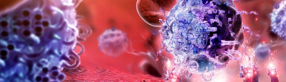 Хороший иммунитет — основа здоровья